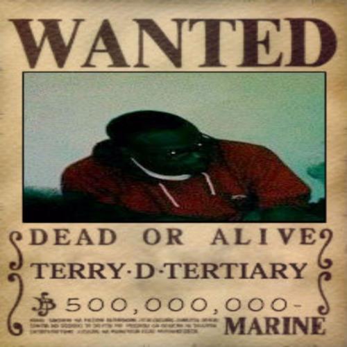 TerryTertiary's avatar