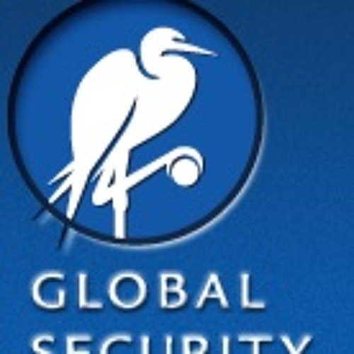 Global Security Institute's avatar