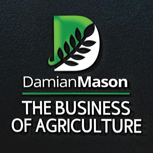 Damian Mason's avatar