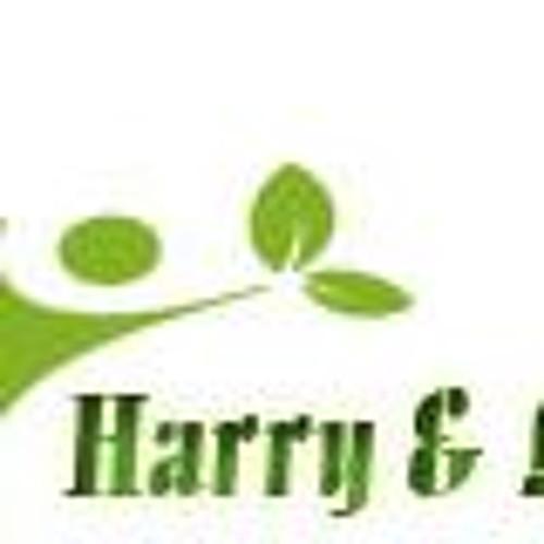 harryandlouise's avatar