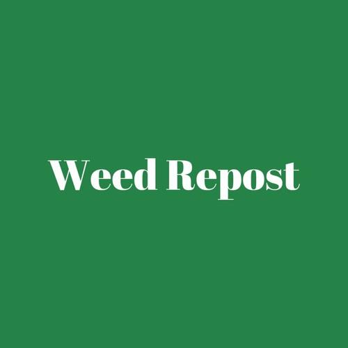 Weed Radio Repost's avatar