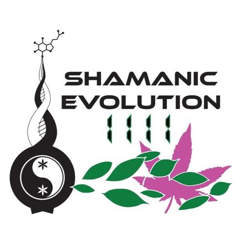 Shamanic Evolution 1111's avatar