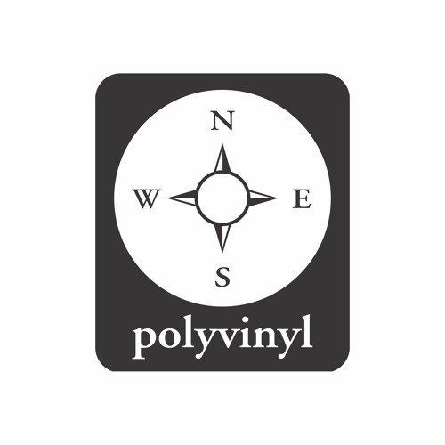 Polyvinyl Records's avatar