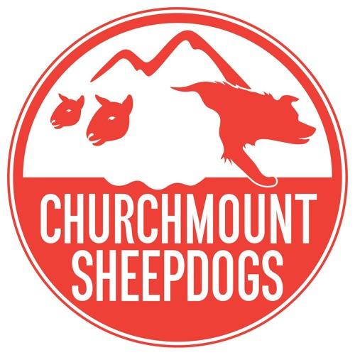 Churchmount Sheepdogs's avatar