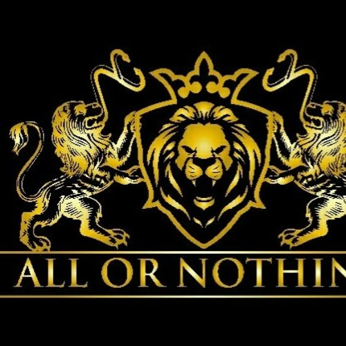 All or Nothing Inc.'s avatar