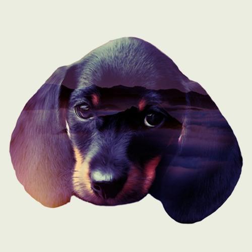 Dachshund Records's avatar