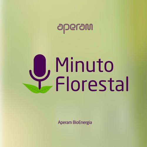 Aperam BioEnergia's avatar