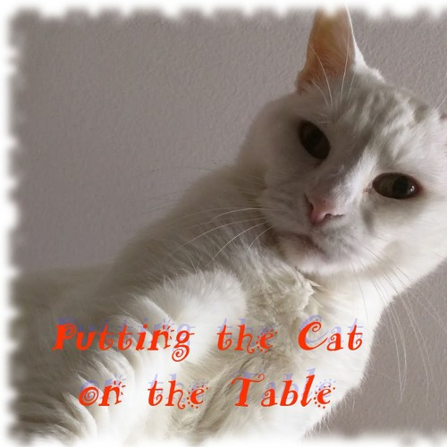 Putting the Cat on the Table's avatar