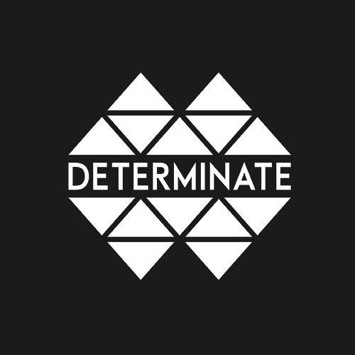 Determinate Inc's avatar