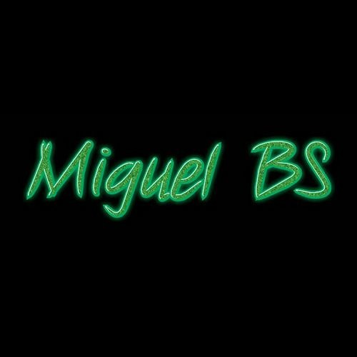 Miguel BS's avatar