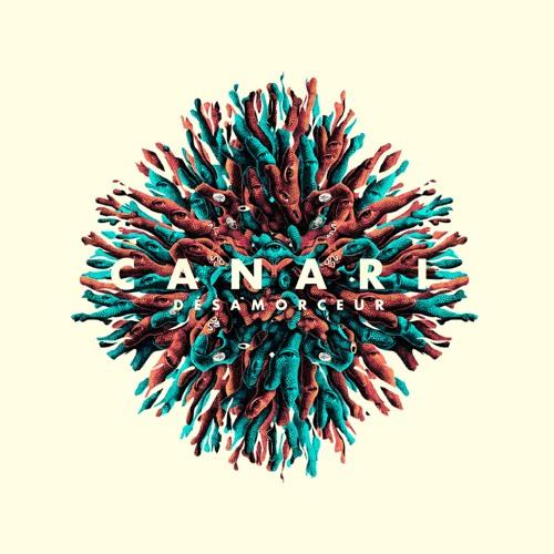 CANARI's avatar