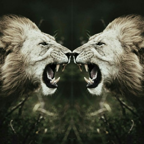 Masel tov מזל טוב's avatar