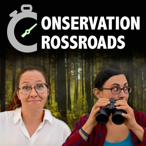 Conservation Crossroads's avatar