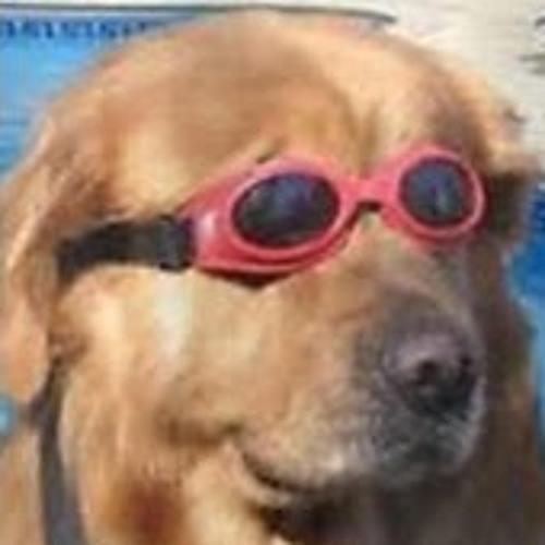 DOGGO's avatar