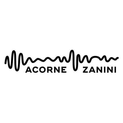 AcorneZanini's avatar