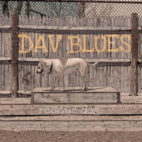 Dav Blues's avatar