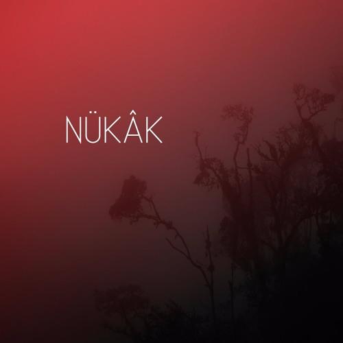 Nükâk's avatar