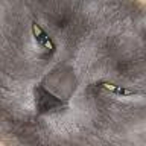 louis belmont's avatar
