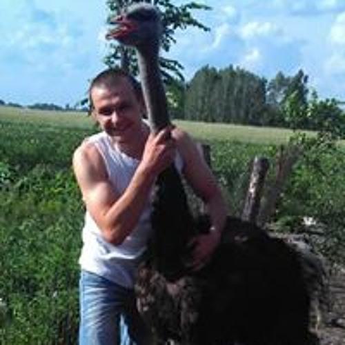 Андрей Радченко's avatar