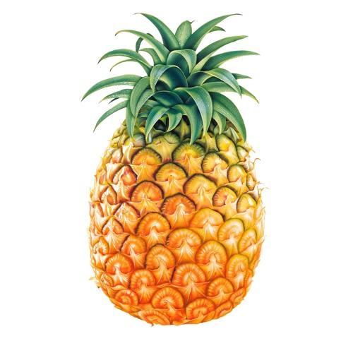 ananasdronningen's avatar