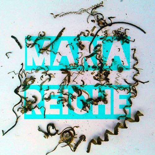 MARIA REICHE's avatar