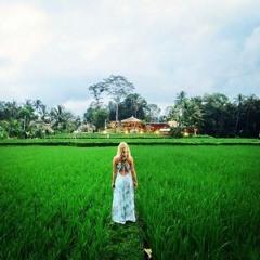 NewEarth Haven Bali
