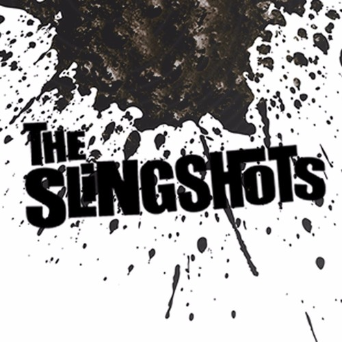 The Slingshots's avatar