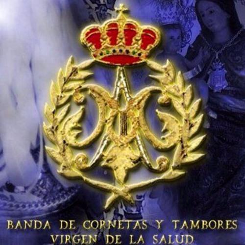 Banda Virgen de la Salud's avatar