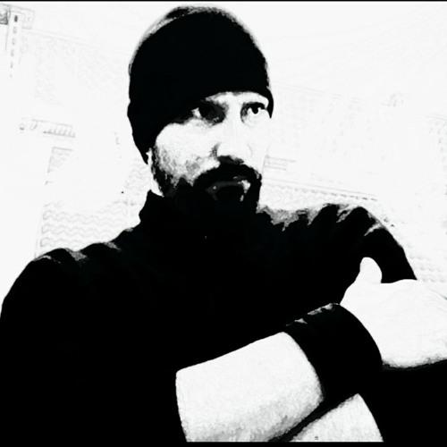 Sylvain Völlmy's avatar