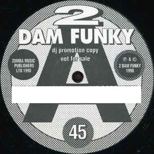 2 Dam Funky's avatar