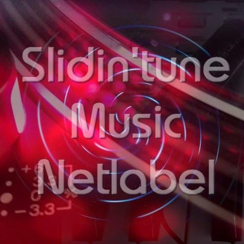 Slidin'tune Music Netlabel's avatar