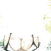 UMMO X OMENXIII - Thats On Me (1)