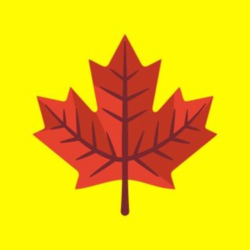 Maple Leaf Records's avatar