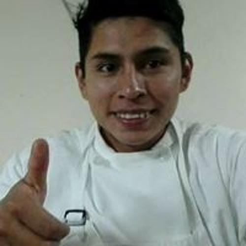 Luis Pichola's avatar