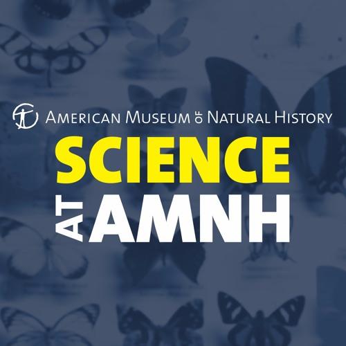Science at AMNH's avatar