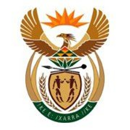 South African Government's avatar