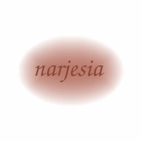 Torsten Narjes's avatar