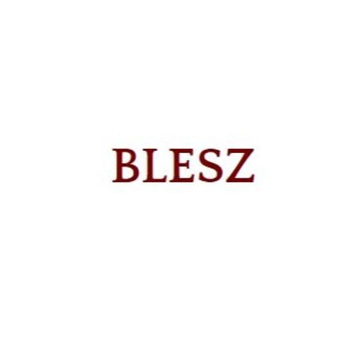BLESZ's avatar