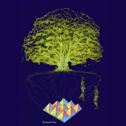 Pflanzenmusik's avatar