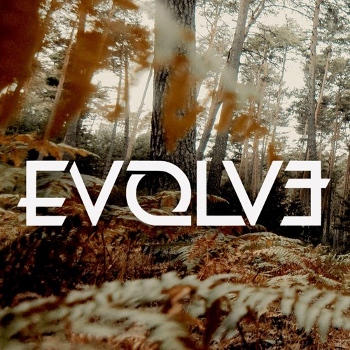 Evolve - Waves Of Tears (Acoustic)