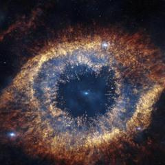 Citizen of Cosmos