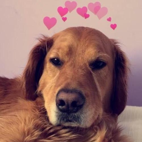 juliehenrichs's avatar