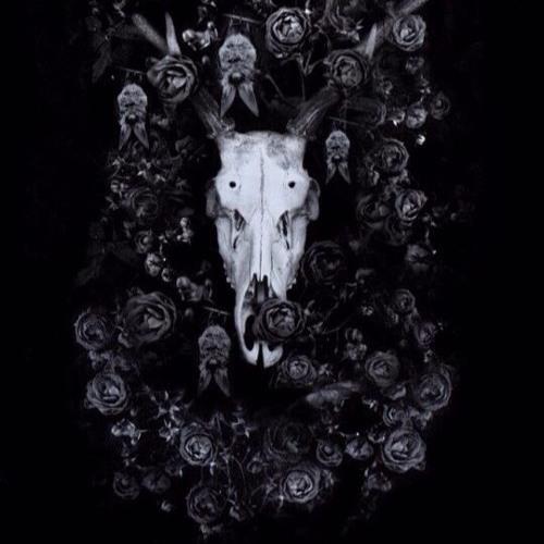 ŞymphØ~Я's avatar