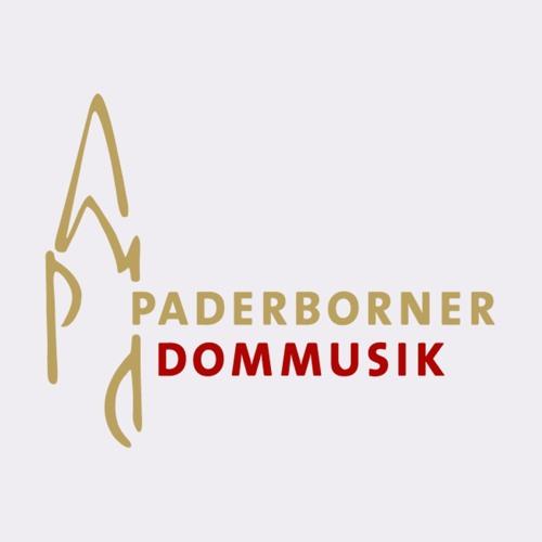 Paderborner Dommusik's avatar