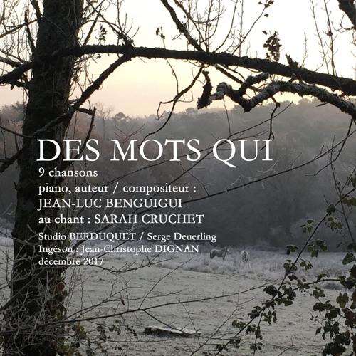 Jean-luc Benguigui / Sarah Cruchet's avatar