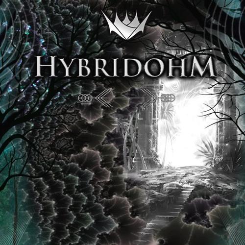 Hybridohm (Official)'s avatar