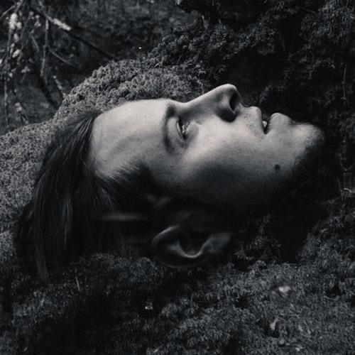 Mick Pedaja's avatar