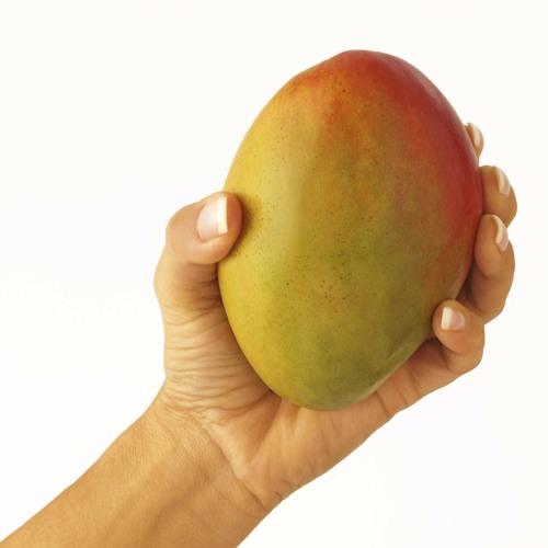 Girls Mango