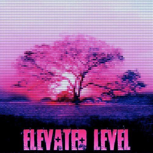 ElevatedLevel's avatar