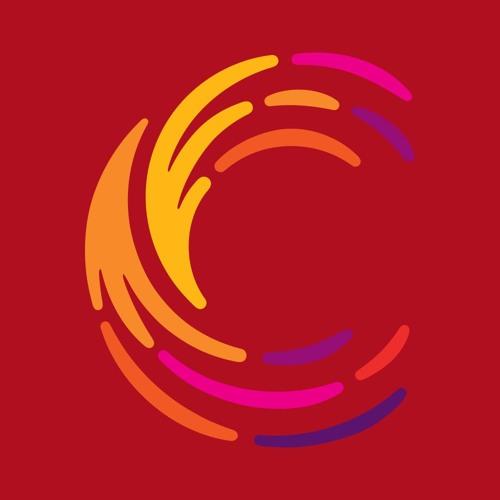 Conectas Direitos Humanos's avatar